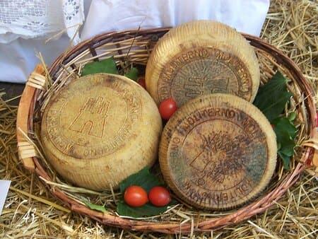Canestrato-Pugliese-formaggi-italiani