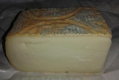 Taleggio-formaggio-italiano