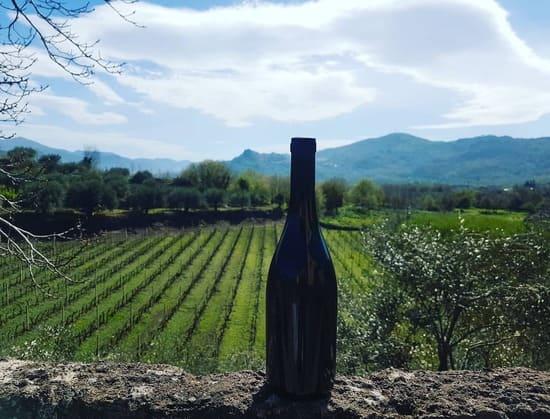 bottiglie-di-vino-Borgognotta
