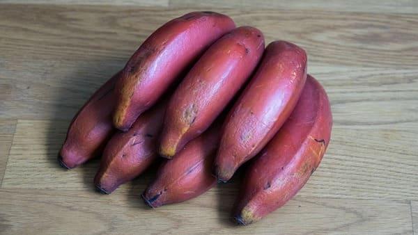 Banana-rossa