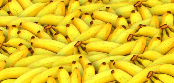 varieta-di-banane